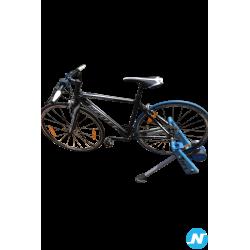Vélo speedster 50